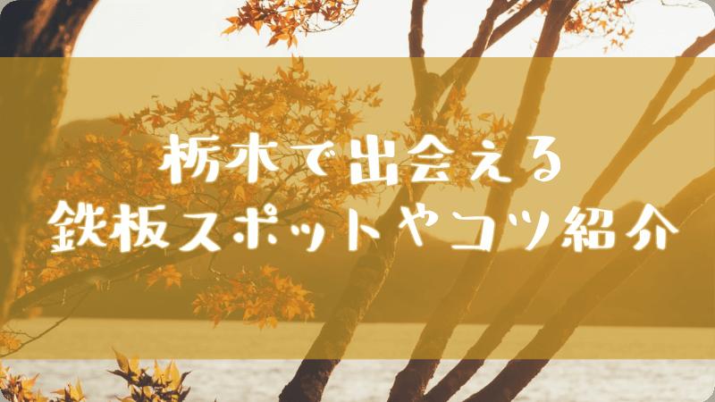 栃木で出会えるスポット・出会うコツ