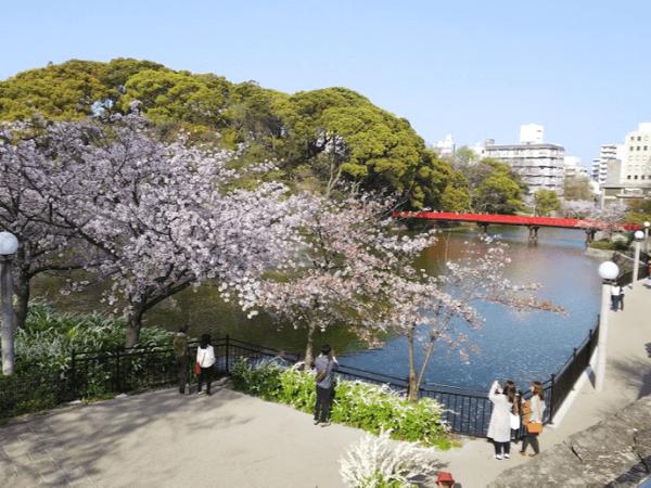 大阪でセフレとカーセックスできる場所1