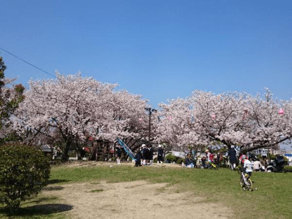 岡山でおすすめのカーセックススポット2