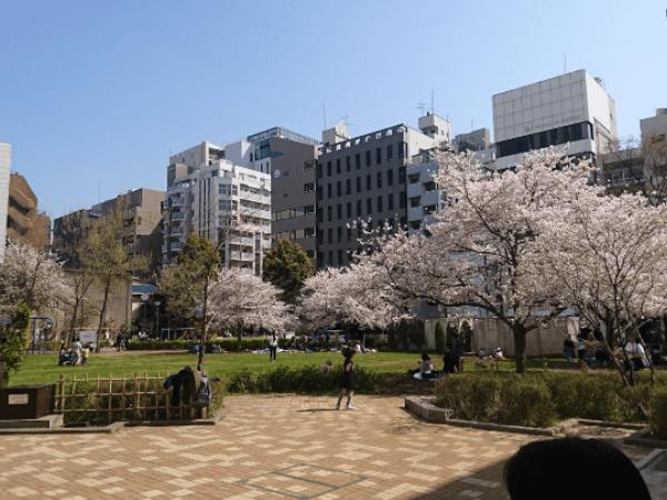 上野でおすすめの青姦スポット01