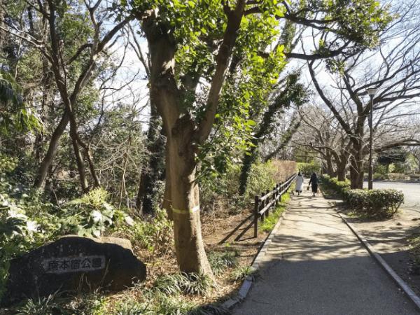 神奈川でセフレと青姦できる場所1
